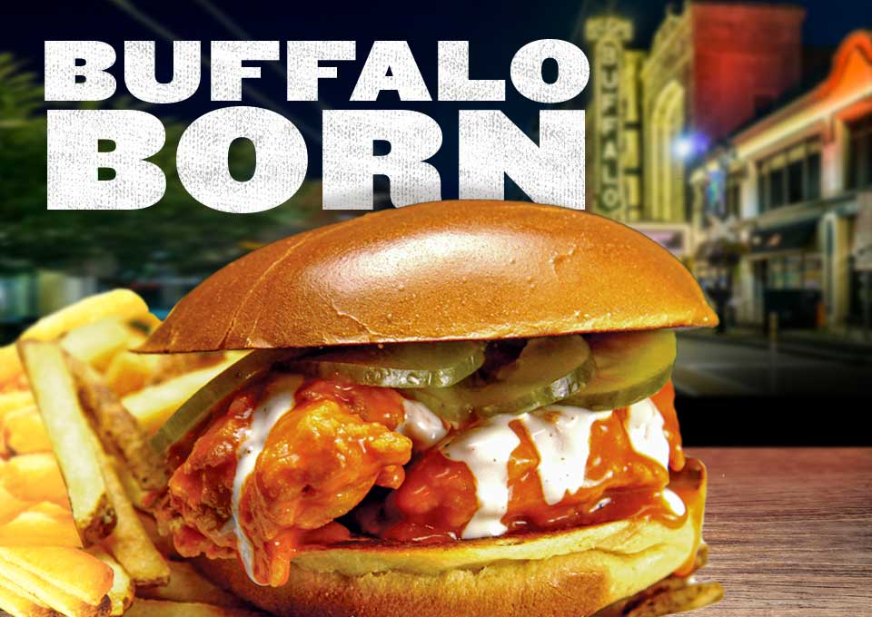 Buffalo Born. Buffalo Chicken Sandwich.